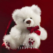 Teddy Day - 10th Feb (0)